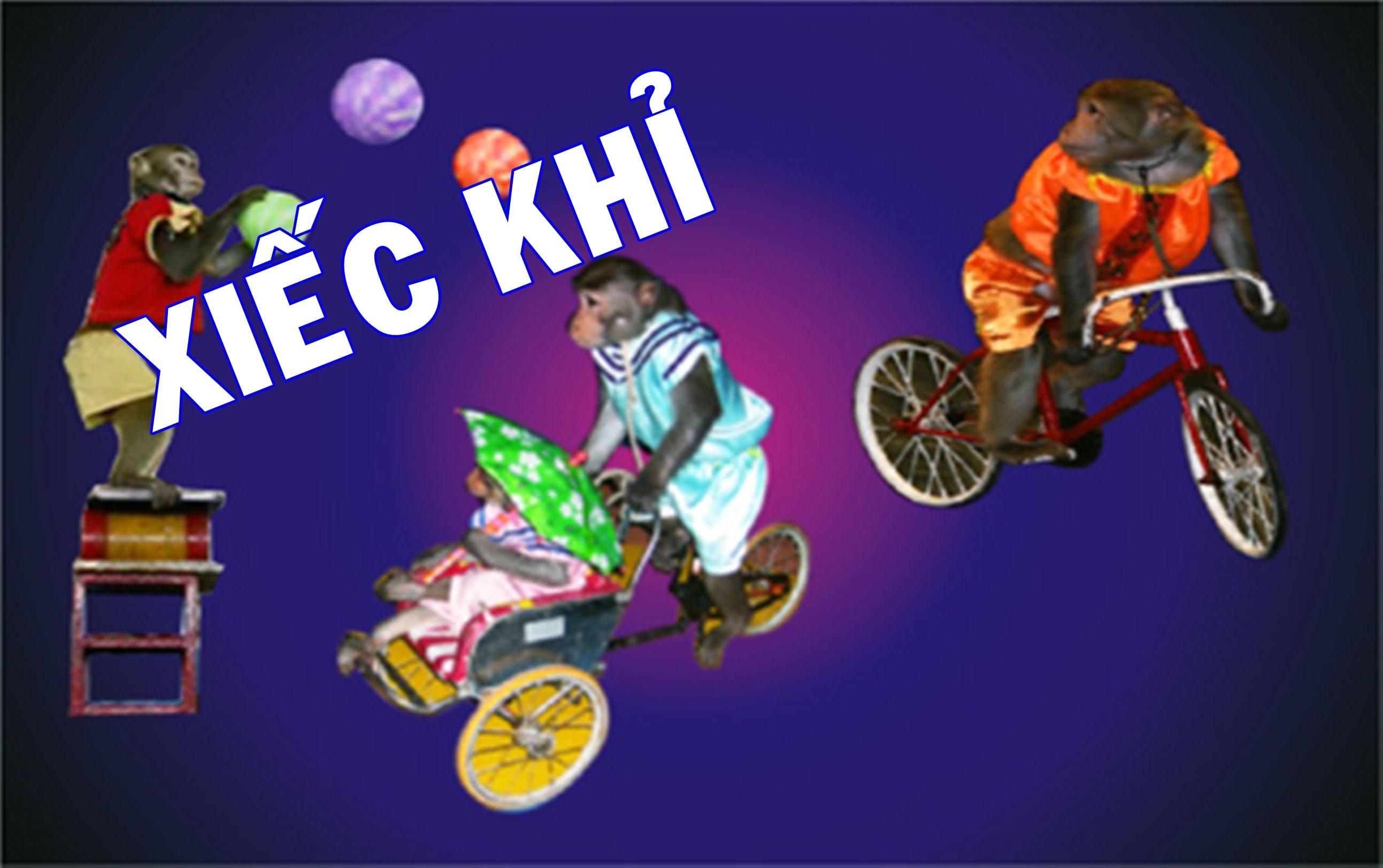 chothuexieckhitaihanoi